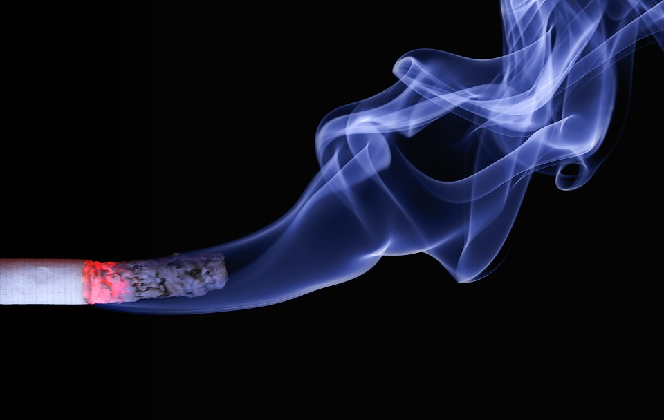 Tobacco - Science and Digital News